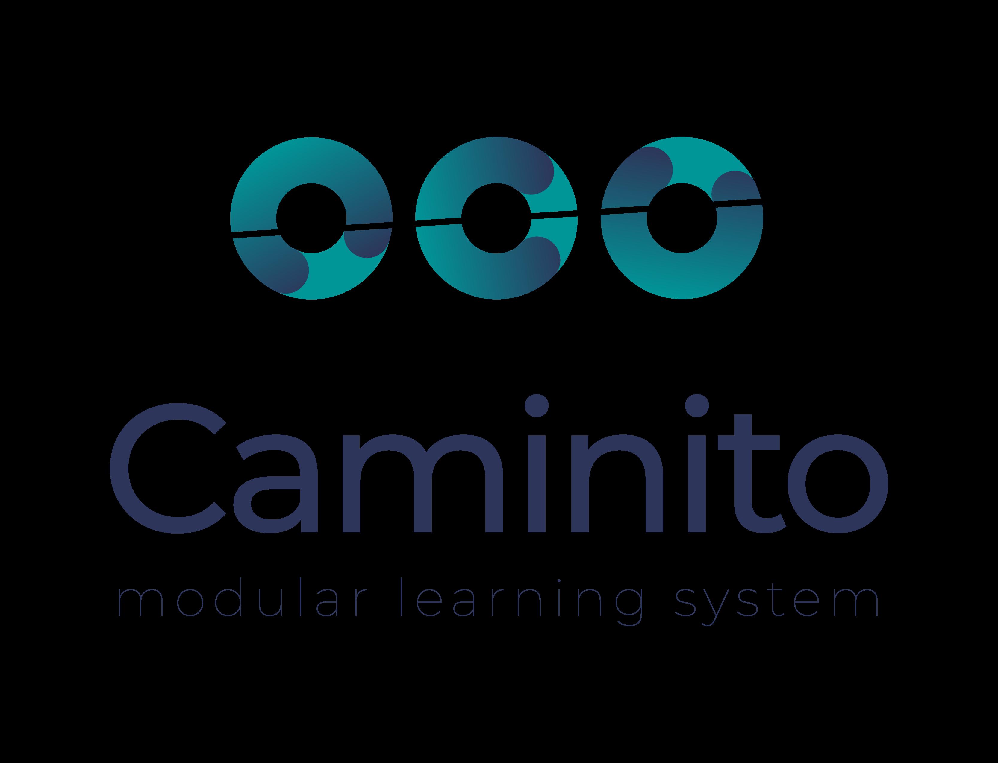Caminito modular learning system